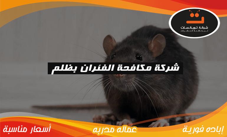 شركة مكافحه الفئران بظلم