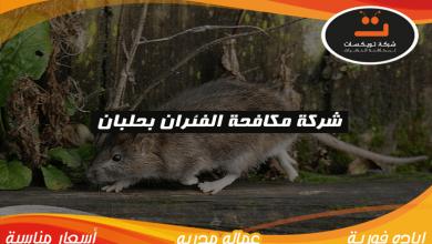 Photo of شركة مكافحه الفئران بحلبان