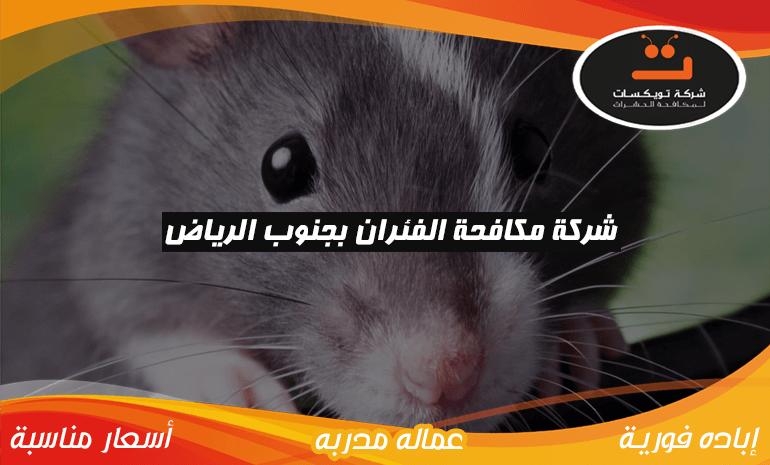 شركة مكافحه الفئران بجنوب الرياض