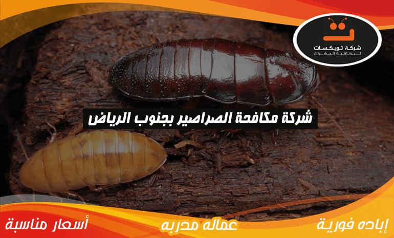 شركة مكافحه الصراصير بجنوب الرياض