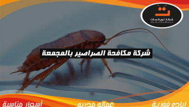 Photo of شركة مكافحه الصراصير بالمجمعة