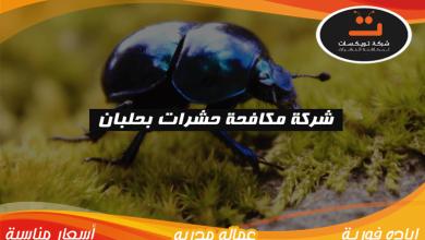 Photo of شركة مكافحه حشرات بحلبان
