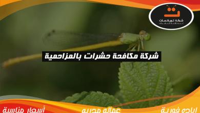 شركة مكافحه حشرات بالمزاحمية