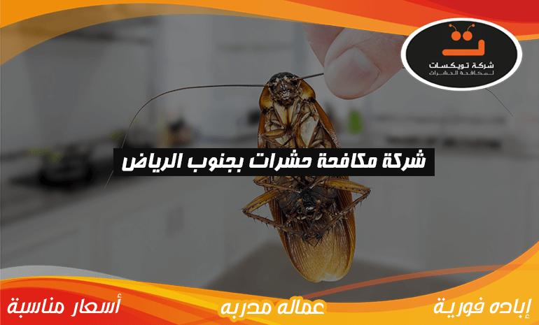 شركة مكافحه حشرات بجنوب الرياض