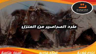 Photo of طرد الصراصير من المنزل
