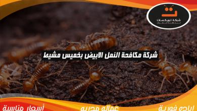 Photo of شركة مكافحة النمل الابيض بخميس مشيط