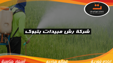 شركة رش مبيدات بتبوك