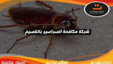 Photo of شركة مكافحة الصراصير بالقصيم