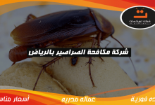 Photo of شركة مكافحة الصراصير بالرياض