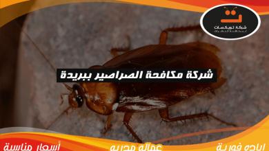 Photo of شركة مكافحة الصراصير ببريدة