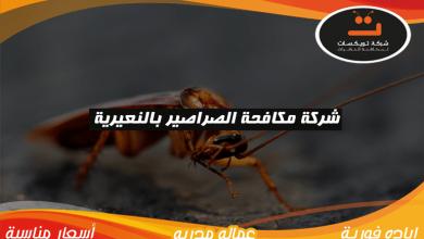 Photo of شركة مكافحة الصراصير بالنعيرية